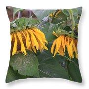 Sunflowers Faded Bloom Series - Image--sfwbix Throw Pillow