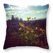 Sunflowers In Sun Light Throw Pillow