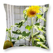 Sunflowers In The Window Throw Pillow