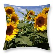Sunflowers Throw Pillow by Kerri Mortenson