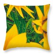 Sunflowers Medley Throw Pillow