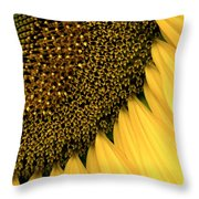 Sunflowers Of Summer Throw Pillow