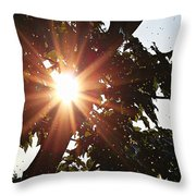 Sunhine And Raindrops Throw Pillow