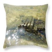 Sunken Glory Throw Pillow