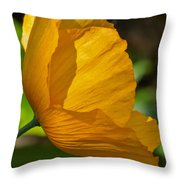Sunkissed Poppy Throw Pillow