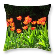 Sunkissed Tulip Garden Throw Pillow