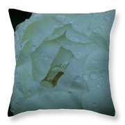 Sunless Throw Pillow
