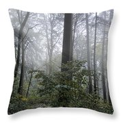 Sunlight And Fog Throw Pillow