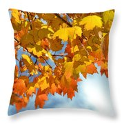Sunlight And Shadow - Autumn Leaves Two Throw Pillow