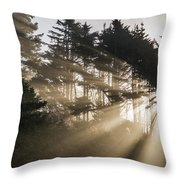 Sunlight Breaks Through The Fog Throw Pillow