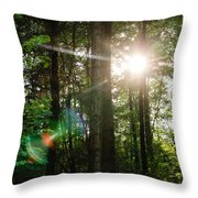 Sunlight Forest Throw Pillow