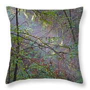 Sunlight Highlights In Armstrong Redwoods State Preserve Near Guerneville-ca Throw Pillow