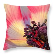 Sunlight Just Right Throw Pillow by Heidi Smith