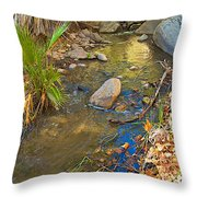 Sunlight On Andreas Creek In Indian Canyons-ca Throw Pillow