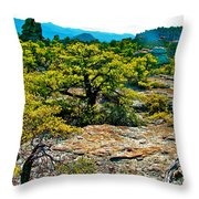 Sunlight On Balanced Rock Trail In Chiricahua National Monument-arizona Throw Pillow