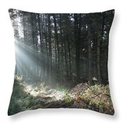 Sunlight On Cannock Chase Throw Pillow
