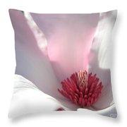 Sunlight On Magnolia Blossom Throw Pillow