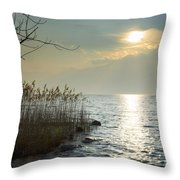 Sunlight On The Lake With Pampas Grass Throw Pillow