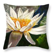 Sunlight On White Lily Throw Pillow