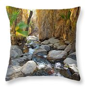 Sunlight Over Rocky Andreas Creek In Indian Canyons-ca Throw Pillow