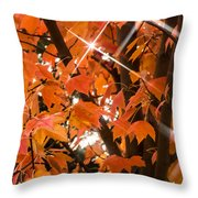 Sunlight Through The Leaves Throw Pillow