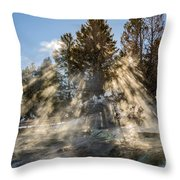 Sunlight Through The Trees 2 Throw Pillow