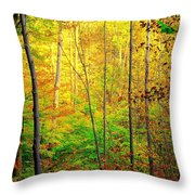 Sunlights Warmth Throw Pillow