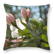 Sunlit Apple Blossoms Throw Pillow