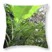 Sunlit Banana With Bamboo Throw Pillow