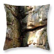 Sunlit Boulder On Shades Mountain Throw Pillow