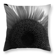 Sunlit Bw Throw Pillow