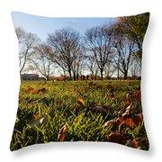 Sunlit Fall Lawn Throw Pillow