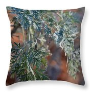Sunlit Herb Throw Pillow