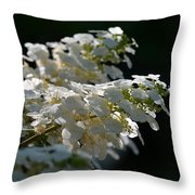 Sunlit Hydrangeas Throw Pillow