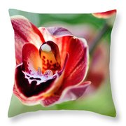 Sunlit Miniature Orchid Throw Pillow by Kaye Menner