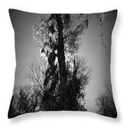Sunlit Moss Throw Pillow
