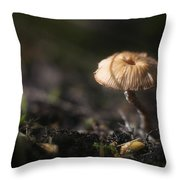 Sunlit Mushroom Throw Pillow