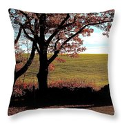 Sunlit Pasture At Moore State Park Throw Pillow