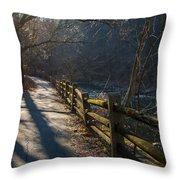 Sunlit Path Throw Pillow