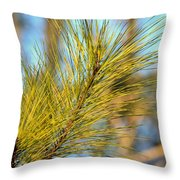 Sunlit Pine Leaders Throw Pillow