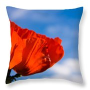 Sunlit Poppy Throw Pillow
