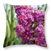 Sunlit Purple Crepe Mertle Throw Pillow