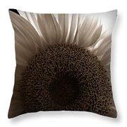 Sunlit Sepia Throw Pillow