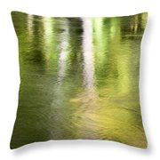 Sunlit Tree Reflections Throw Pillow