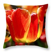 Sunlit Tulips Throw Pillow by Rona Black