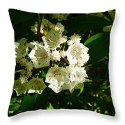 Sunlit Wildflower Throw Pillow