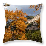 Sunlit Window Throw Pillow