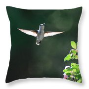Sunlit Wings Throw Pillow
