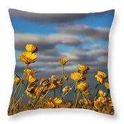 Sunlit Yellow Wildflowers Throw Pillow