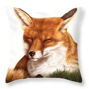 Sunnin' Red Fox Throw Pillow